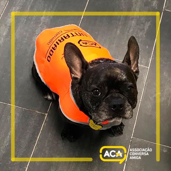 Voluntário Canino